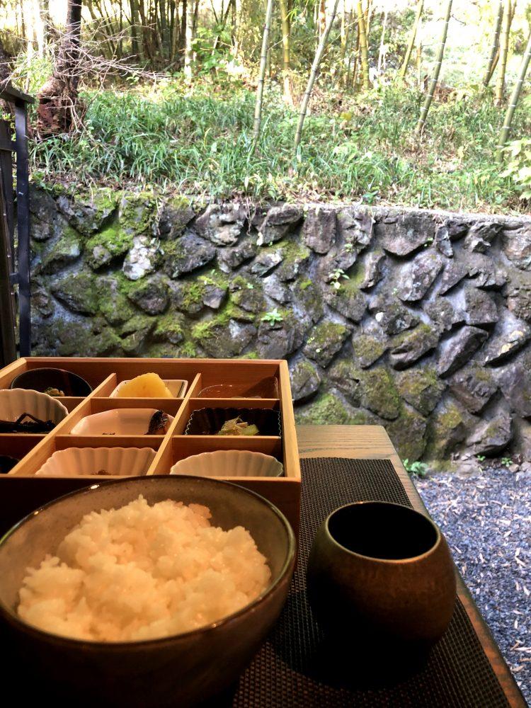 「NIPPONIA 小菅 源流の村」の部屋から見える風景